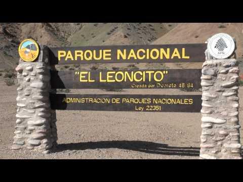 Pampa del Leoncito - San Juan