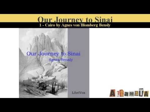 Our Journey to Sinai