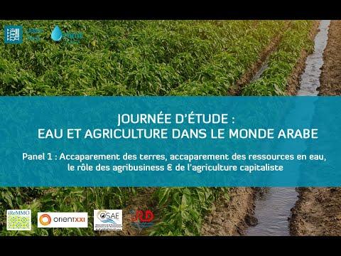 Panel 1 - Accaparement des terres et des ressources en eau : agribusiness & agriculture capitaliste