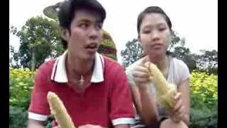 Vietnamese Single Network   Forum VietnamTi u lâm  truy n cu i   b m t vòng trái b p  b