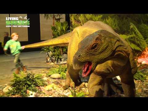 Living Dinosaurs Post Rotterdam