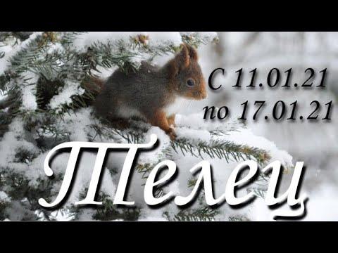 Прогноз на неделю с 11 по 17 января 2021 года для представителей знака зодиака Телец