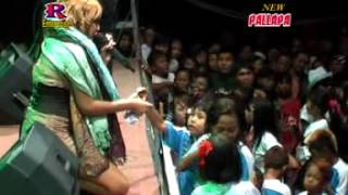 Video Janur Kuning - New Pallapa Live Petraka Pekalongan by Robian Dealova download MP3, 3GP, MP4, WEBM, AVI, FLV Oktober 2017