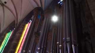 Orgel RIEGER: Vienna duomo Santo Stefano -  inizio messa.