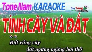 Tình Cây Và Đất Karaoke Tone Nam - Karaoke Duy Tùng