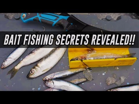 In DEPTH Rig How TO - Salmon Fishing With Bait (SECRETS REVEALED!)
