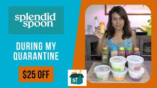 Splendid Spoon Review 2020 -  Plant-Based Food Delivery Service During My Quarantine