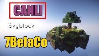 7BelaCo Minecraft SkyBlock Canlı Yayın Bu Seride İlk Yayınımız