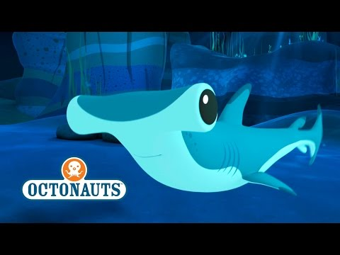 Octonauts: Hammer Head Sharks In Trouble