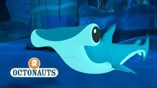 Octonauts: Hammer Head Sharks In Trouble