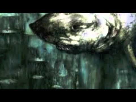 "Dry the River : ""Bible Belt"" (album version)"