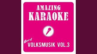 Stimmungs-Hitmedley (Karaoke Version) (Originally Performed By Hansi Hinterseer)