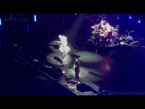 Red Hot Chili Peppers - Snow (Hey Oh) - Staples center, LA (SBD audio)