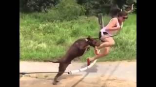 Cand faci atletism si te crezi o gazela dar te faci de ras