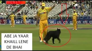 Cricket Top LoL Moments 2019 Funny Troll Video - Try not to Laugh Challenge!