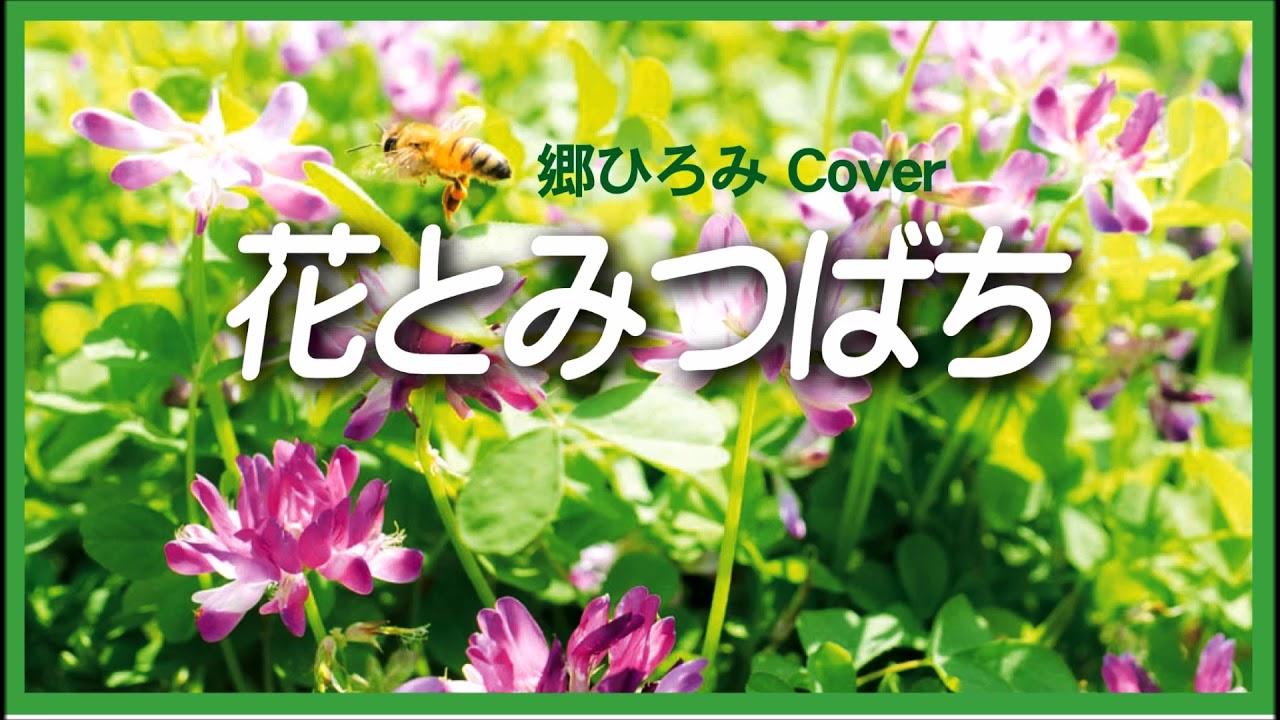 ひろみ 郷 と 花 みつばち