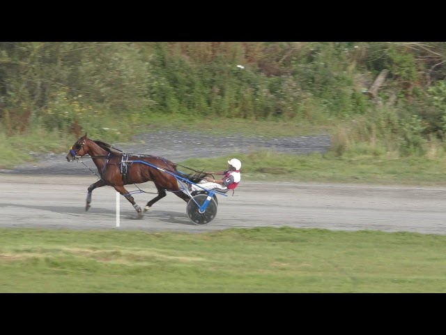 VDM - 2019 - Oakwood Stud 3YO Colts Final