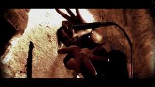 UNZUCHT - Engel der Vernichtung (Official Video)