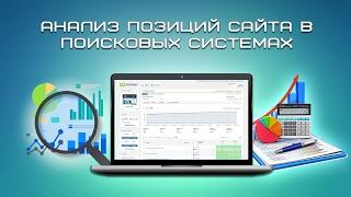 видео анализ позиции сайта