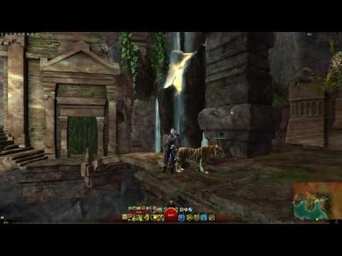Gw Ranger Pvp Build Druid