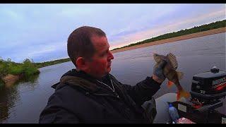 Ловим окуня на хвост. Жесть, сколько же здесь рыбы?!!! Часть 3.