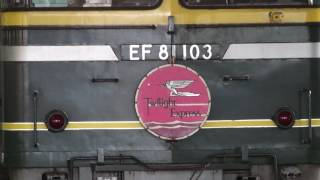 【廃止・パンタ上げ】8002レ 寝台特急トワイライトエクスプレス号 大阪行き EF81-103牽引+24系