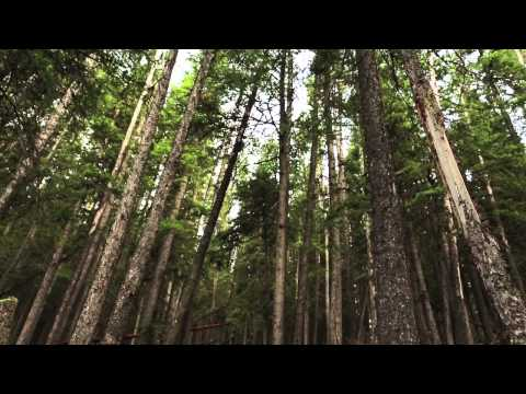 Trailer: Through the Canadian Wilderness with Jay and Varina Patel