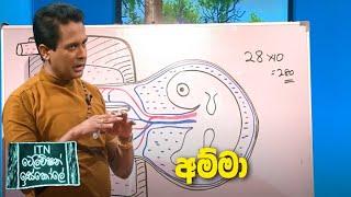 ITN Television Iskole - (2021-02-06) | ITN Thumbnail