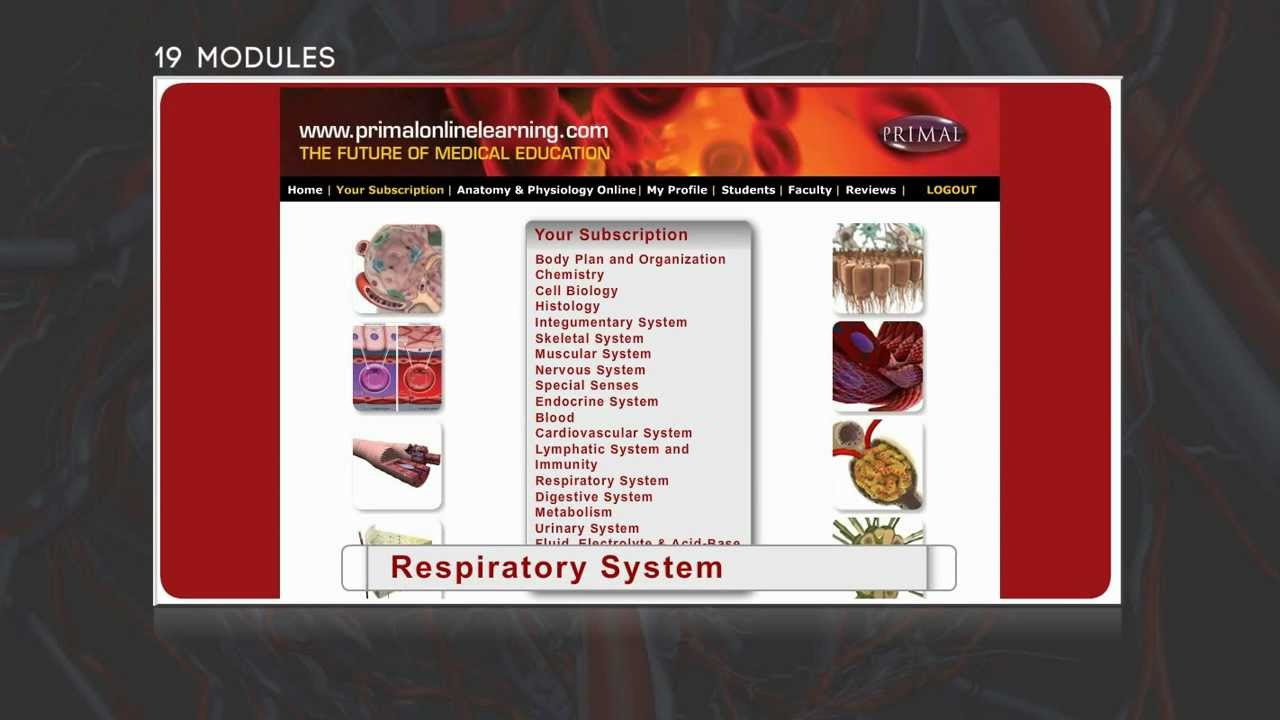 Anatomy and Physiology Online - Primal Online Learning - YouTube