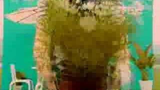 楊丞琳 Rainie Yang - 慶祝 [Celebration] [Salut d'amour ] [MV]