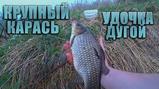 Рыбалка на крупного карася на поплавочную удочку Крупный Карась Удочка дугой
