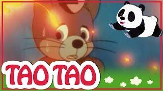 Tao Tao - 23 -  צפון הרוח והינשוף