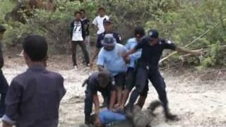 Video Police brutality in Timor-Leste download MP3, 3GP, MP4, WEBM, AVI, FLV Juli 2018