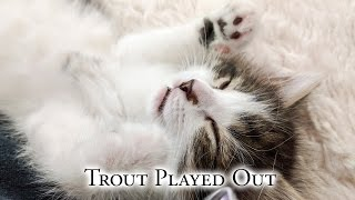 Trout Played Out thumbnail