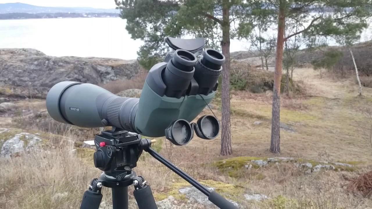 Test av swarovski btx teleskop youtube
