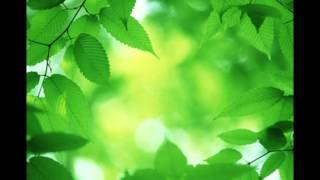 Richi Dandha - Synesthesia Poem