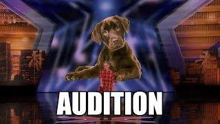 Lily Wilker America's Got Talent 2018 Audition|GTF