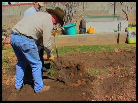 How To Prepare Garden Soil For Planting   YouTube