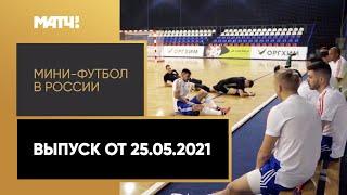 Мини футбол в России Выпуск от 25 05 2021