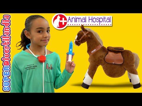 HOSPITAL de ANIMALES! 24 HORAS siendo VETERINARIAS!!