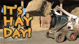 Its HAY Day