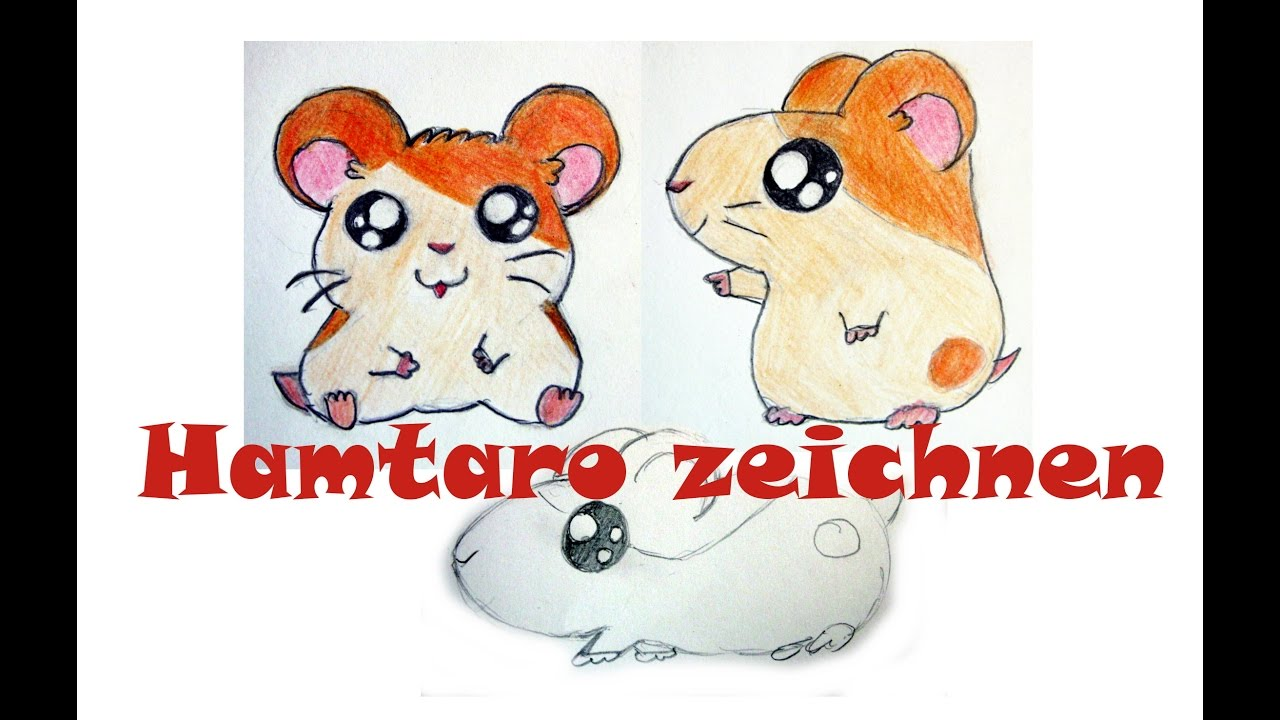 manga tiere zeichnen 5 hamtaro zeichnen anime hamster youtube. Black Bedroom Furniture Sets. Home Design Ideas