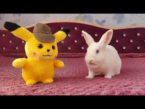 Кролик Ляля и детектив Пикачу!