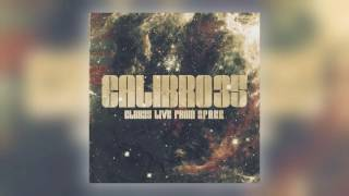 10 Calibro 35 - Eurocrime (Live) [Record Kicks]