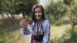 Nicoleta Ghelase- C-asa este viata omului