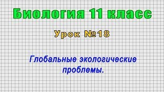 Биология 11 класс (Урок№18 - Глобальные экологические проблемы.)