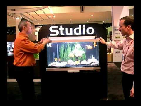 Studio Aquarium by Hagen - A Sneak Peek Live From Global Pet Show