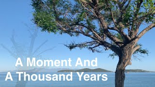 A Moment And A Thousand Years - Solo Guitar - Stelios Kyriakidis
