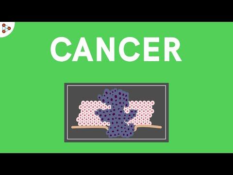 Cancer - Treatment, Diagnosis   Types of Tumors   Human Health and Disease   Don't Memorise