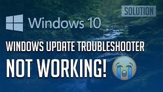 "Fix ""Windows Update Troubleshooter Not Working"" in Windows 10"